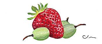 strawberry and grapes - business card