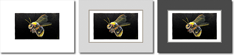 Small Bee prints are available on Etsy