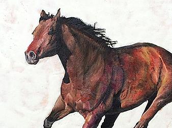 Horse Emergent