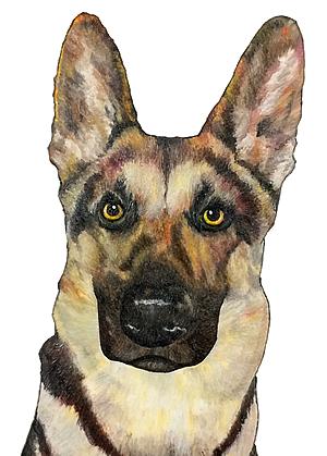 German Shepherd Commission