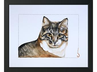 2 Cat