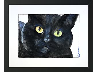4 Cat