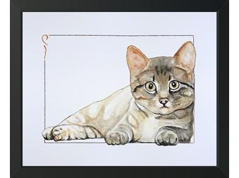 5 Cat
